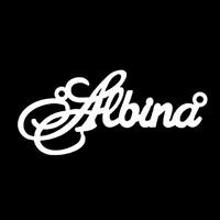 Серебряное колье с именем Albina